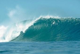 magnifique vague