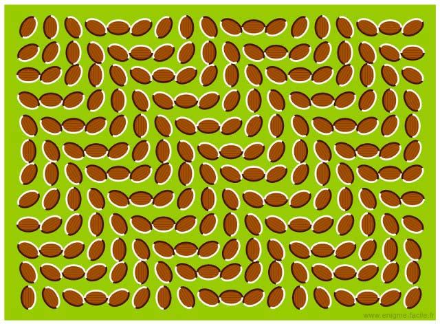 illusion ça bouge
