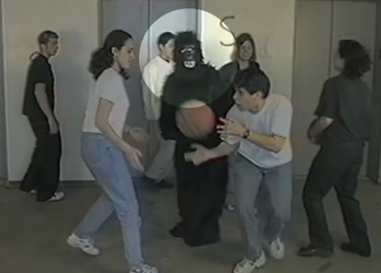 solution gorille basket