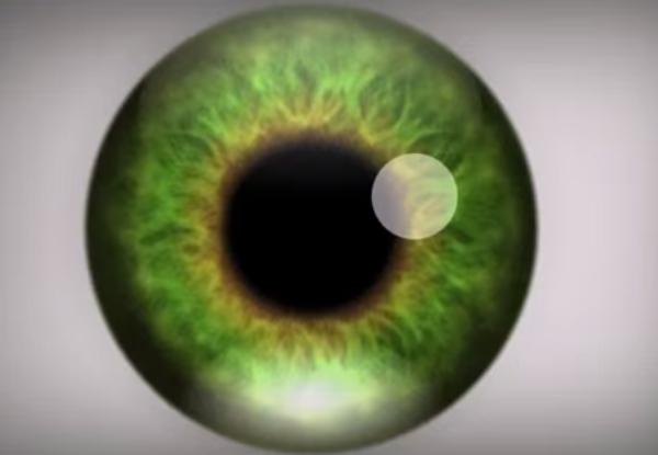 oeil-illusion-optique-video
