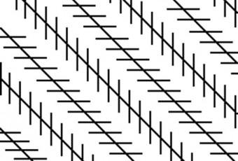 illusion lignes diagonales
