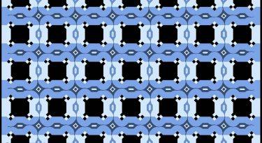 illusion d'optique, le mur de café
