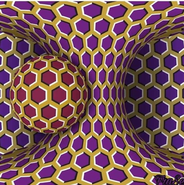 illusion optique image animée