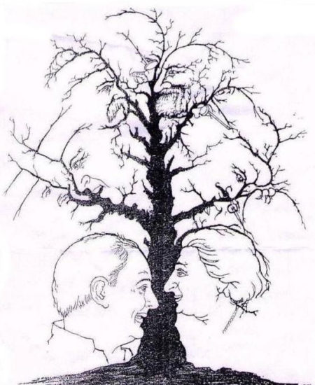 Arbre visage illusion