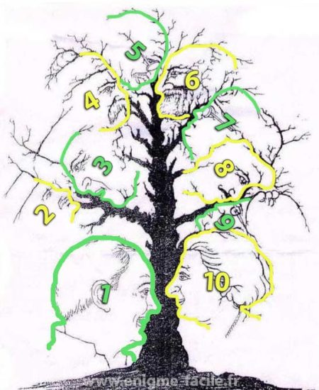 Arbre visage illusion solution