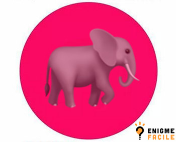 Solution cercle rose elephant